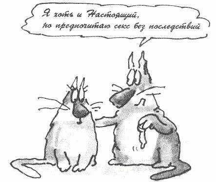 http://cs10173.vkontakte.ru/u5745805/121729496/x_e7917f14.jpg