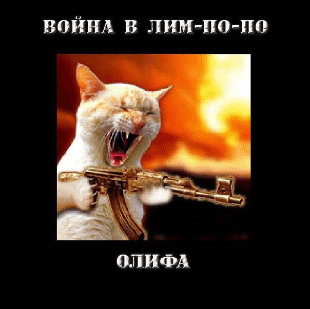 http://cs10182.vkontakte.ru/u2787116/80166919/x_0dd1a90a.jpg