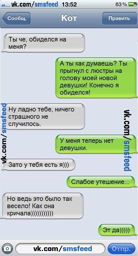 Если бы коты писали СМС.