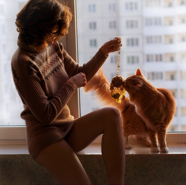 животные, девушки, портрет, кошки, красивые фото.