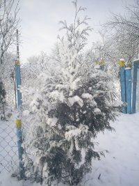 Thtjtg Yjyhj, 2 февраля , Астрахань, id95514980