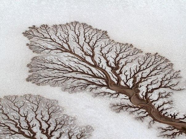 Приливно-отливные потоки в пустыне в Нижней Калифорнии X_9a70d784