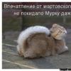ВКонтакте Хм Хмм фотографии