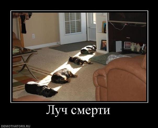 http://cs10199.vkontakte.ru/u677439/8001791/x_3e715cd4.jpg