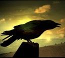 """Предпросмотр - Схема вышивки  """"Черный ворон """" - Схемы автора  """"alenka """" - Вышивка крестом."""
