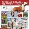 Минская амстафф-команда