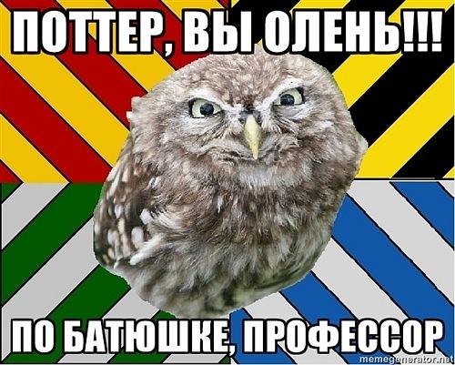 https://cs10209.vkontakte.ru/u48182624/140828935/x_10b1864b.jpg