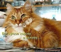 Тимофей Полищук, 7 февраля 1987, Острог, id24534611