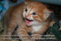 Оксана Захарова, 26 мая , Североуральск, id67402927