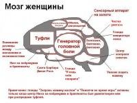 Мои Мозги, 29 июля , Николаев, id106169748