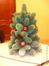 елка из шишек рождественнский венок из пуговиц. хочу еще немного...
