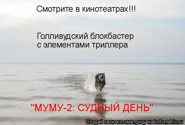 x_045e44e5.jpg