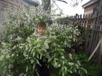 Владимир Хмелёв, 5 ноября , Чебоксары, id171438478