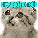 Настя Викторовна, 17 ноября 1999, Винница, id164208049