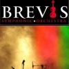 Симфонічний рок-оркестр «BREVIS»