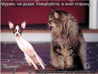 Qwer Qwer, 21 марта 1999, Москва, id130502377