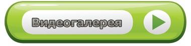 vkontakte.ru/video.php?gid=24951657