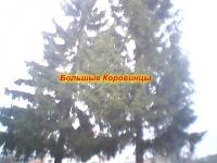 Діма Бурковський, 20 декабря 1995, Киев, id46507867
