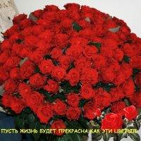 Зарина Асрибабаян, 19 июня 1995, Одесса, id76928967