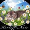 """Питомник """"Korloff Noir"""" / Продажа котят"""
