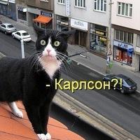 Алёна Грищенко, 3 сентября , Николаев, id185603009