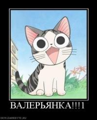 Татьяна Петрова, 26 октября 1999, Ижевск, id154301128