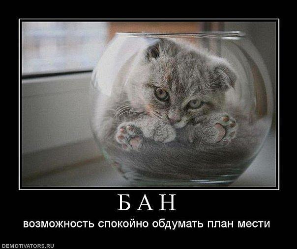 [Изображение: x_60703bc5.jpg]