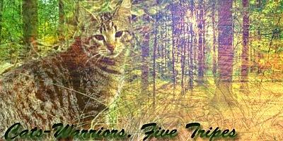 http://cs10258.vkontakte.ru/u85550685/133518407/x_73d9288a.jpg
