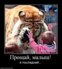 Андрей Терех, 5 февраля , Абакан, id124647284