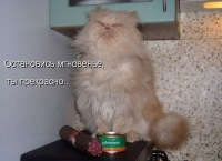 Светлана Вихрева, 5 сентября , Новосибирск, id160636722