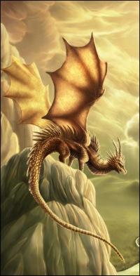 Dragon Dragon, Санкт-Петербург, id119832446