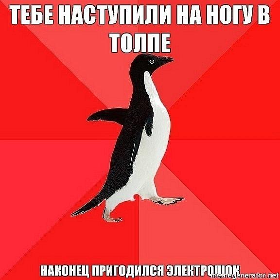 http://cs10275.vkontakte.ru/u20135206/133516992/x_555c2e20.jpg