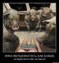 Фото Ильи Айбашева №7