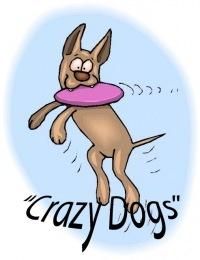 Питомник Crazy dogs, 15 ноября 1984, Санкт-Петербург, id125893428