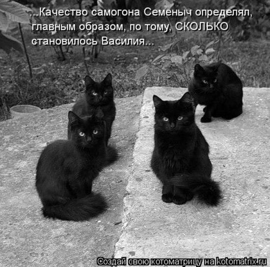 [Изображение: x_e68fba7d.jpg]