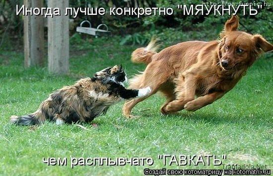 http://cs10283.vkontakte.ru/u17245529/77129404/x_750b101f.jpg