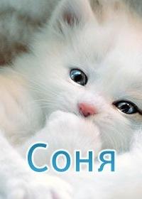 Соня Райвигерст, 13 ноября , Кременчуг, id151189418