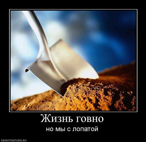 http://cs10286.vkontakte.ru/u53047609/114344562/x_0807b114.jpg