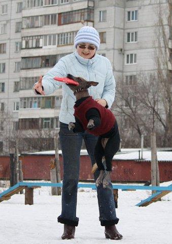 http://cs10289.vkontakte.ru/u17486003/105218989/x_8e587cfd.jpg