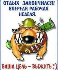 Ира Владимировна, 25 февраля 1996, Москва, id180986492