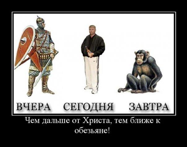 https://cs10291.vkontakte.ru/u73809922/106632891/x_4273fe14.jpg