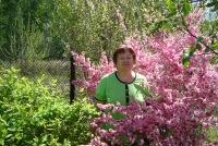 Елена Пешкичева, 2 октября , Челябинск, id164632673