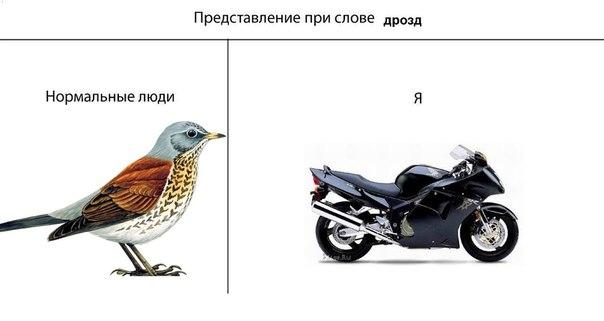 Павел Караштин | Нижний Новгород