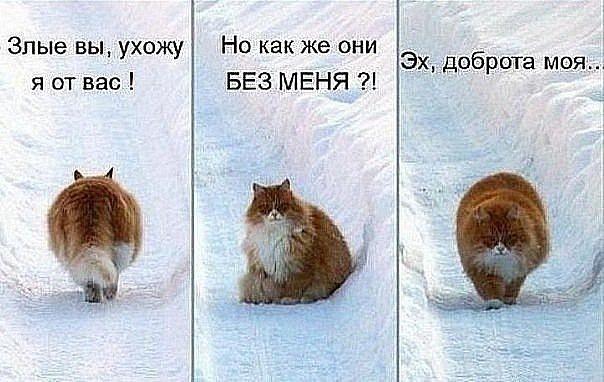 http://cs10297.userapi.com/u5719631/143807968/x_c147700e.jpg
