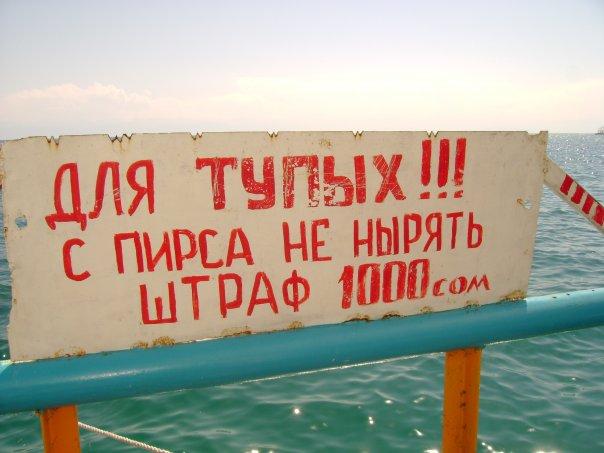 http://cs1030.vkontakte.ru/u577269/2022215/x_818f892c.jpg
