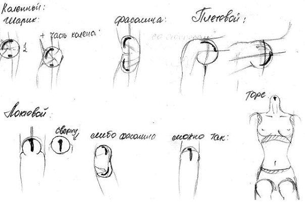 http://cs10301.vkontakte.ru/u17255838/113442058/x_7170e423.jpg