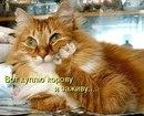 Алла Грекова фото #1