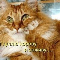 Алла Грекова фото