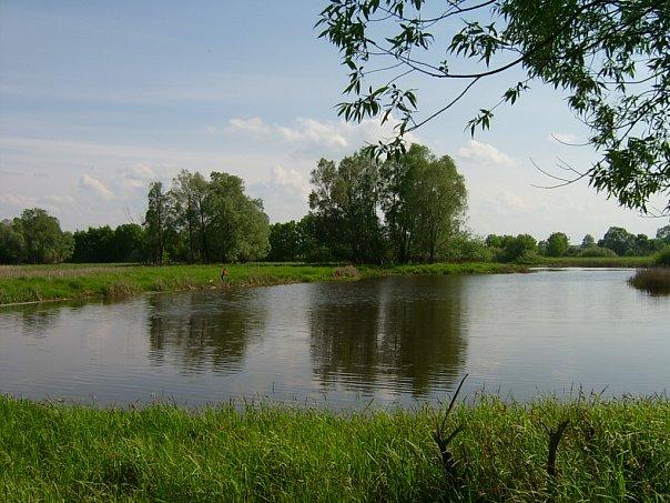 Река Илеть.
