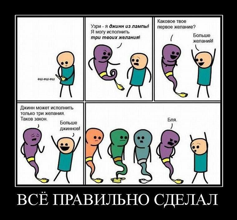 http://cs10307.vkontakte.ru/u925488/100277088/y_5caab919.jpg